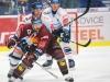 Hokej 029